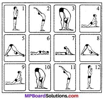 MP Board Class 8th Special English Chapter 20 Yoga: A Way of Life
