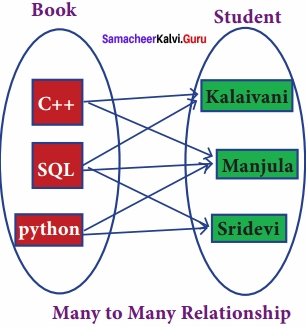 Samacheer Kalvi 12th Computer Science Solutions Chapter 11 Database Concept img 9