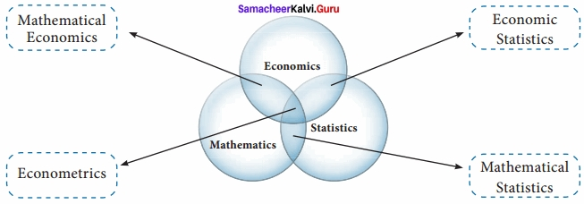 Samacheer kalvi 12th Economics Solutions Chapter 12 Introduction to Statistical Methods and Econometrics img 11